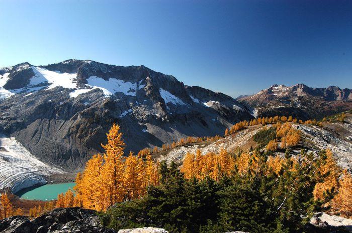 1024px-Glacier-Lyman-Tamarack