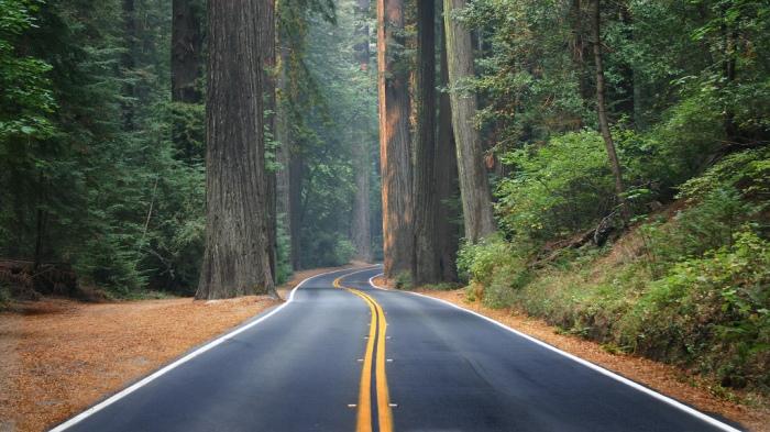 roadtrips nos Estados Unidos