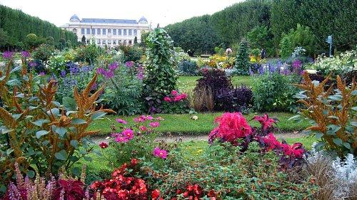 jardin desplantes